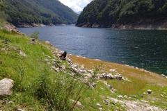 Lago_25